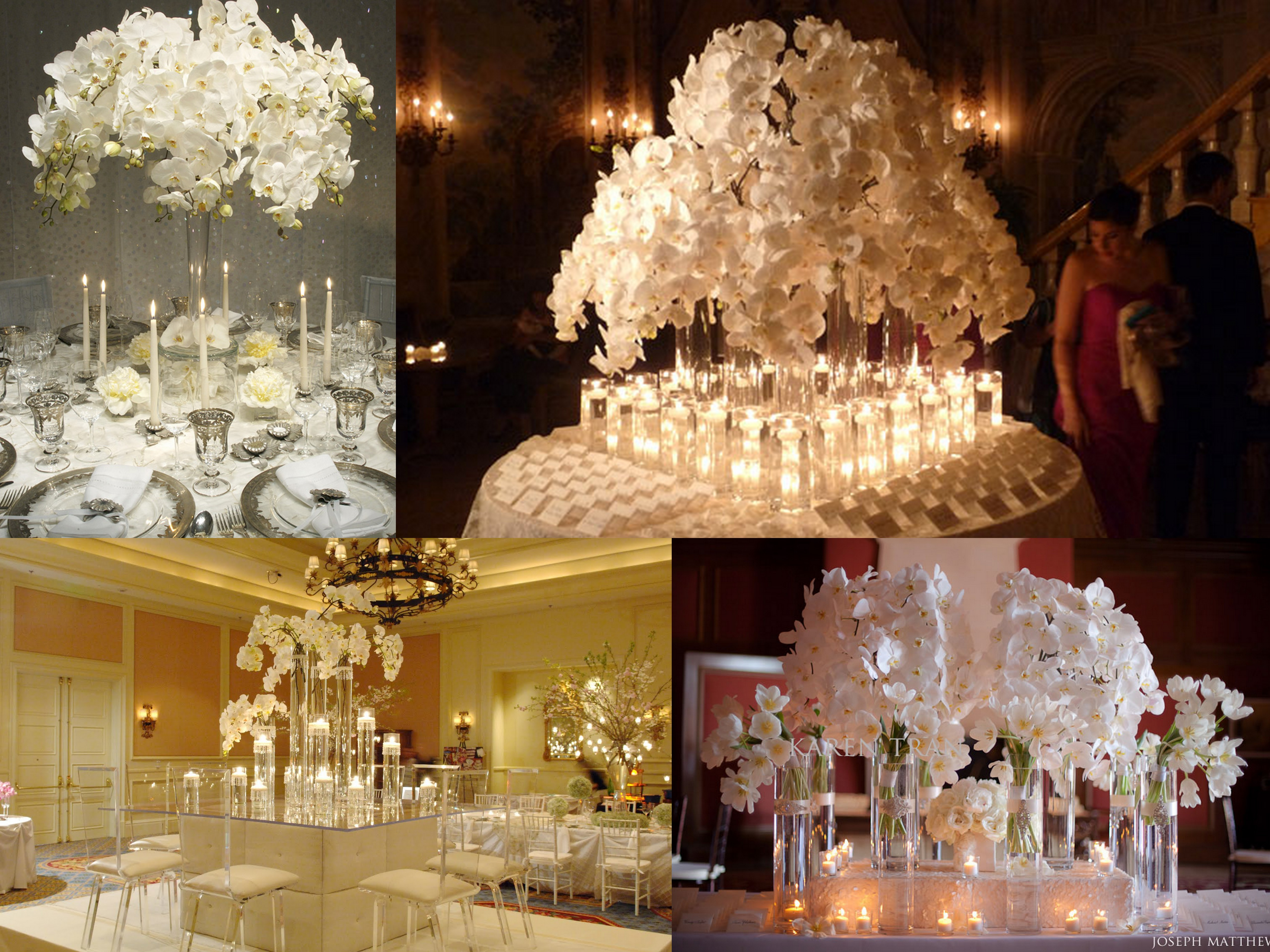 Orchid obsession fantastical wedding stylings